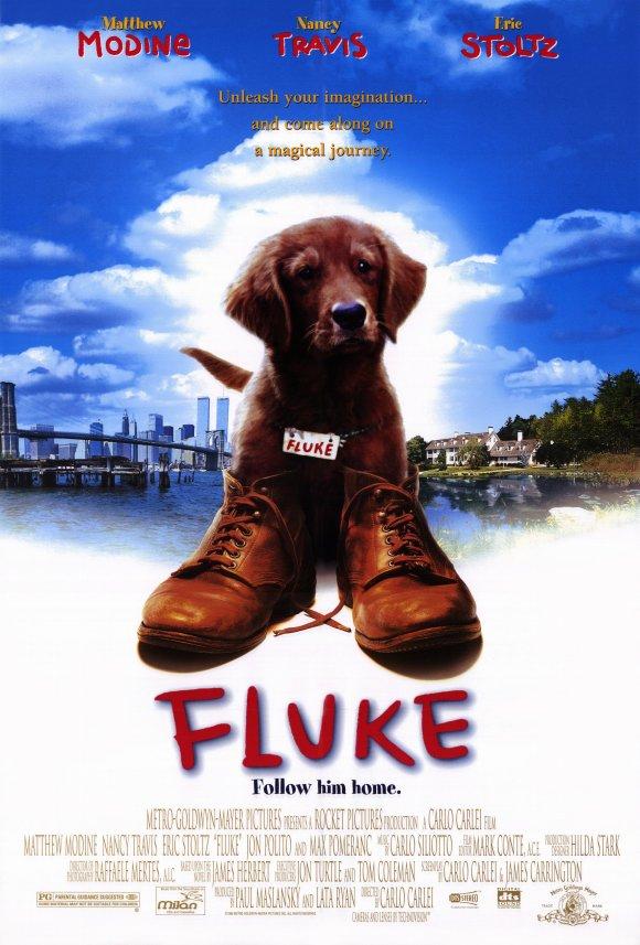 หนังเรื่อง FLUKE (1995)